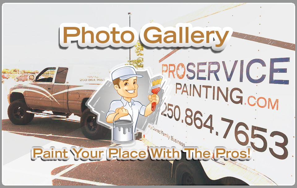 Welcome To The Pro Service Gallery